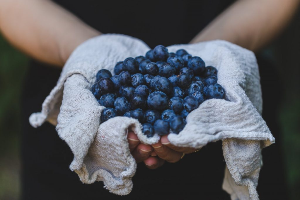 blueberries boosts immune system