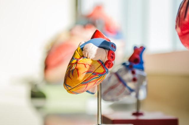 Cardiovascular diseases - trans fat