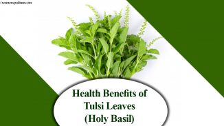 Health Benefits of Tulsi Leaves (Holy Basil)