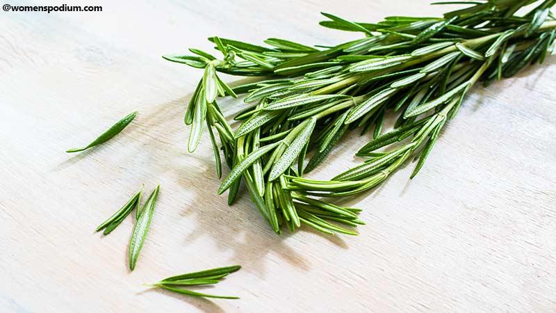 Rosemary Herb