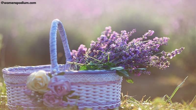Plants As Medicines