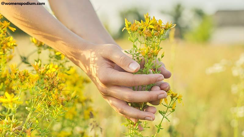 Herbal Treatments
