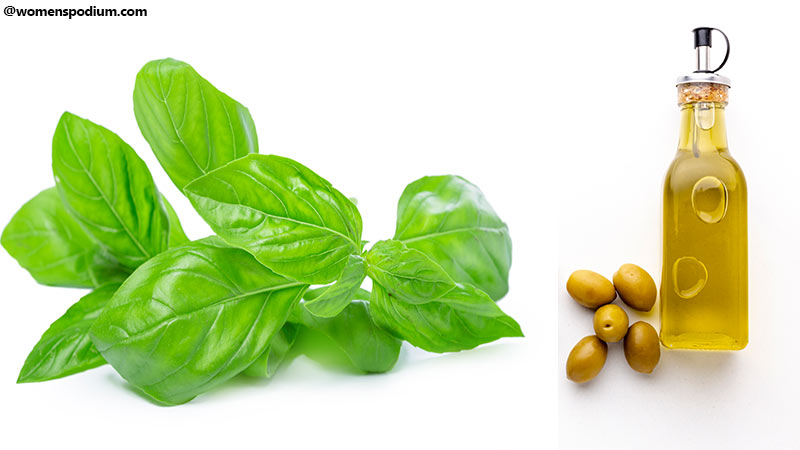 How to Store Basil Properly